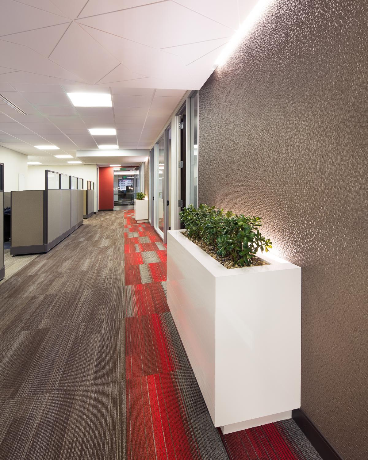 Alden Torch Financial Office Hallway Commercial Construction Denver Colorado