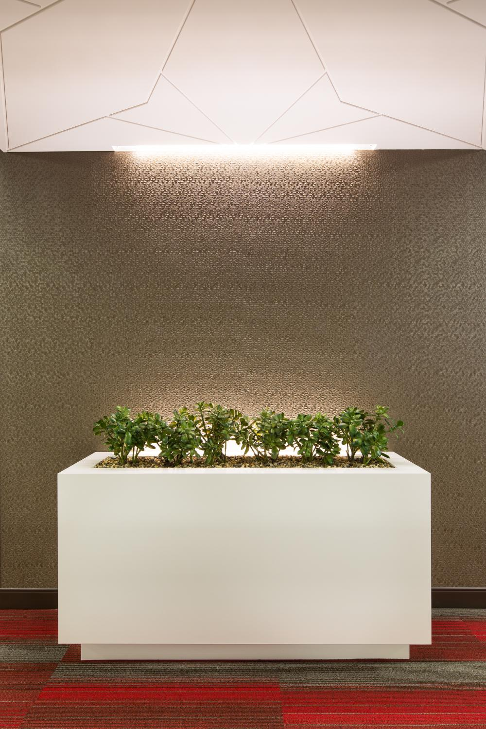 Alden Torch Financial Planter and Wall Decoration Commercial Construction Denver Colorado