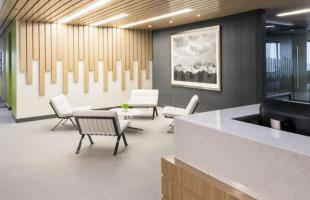 Newalta Reception Area with Wood Ceiling Detail Commercial Construction Denver Colorado